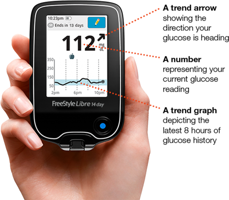 Photo of someone holding the FreeStyle Libre CGM system.