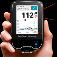 Photo of someone holding the FreeStyle Libre CGM system. thumbnail